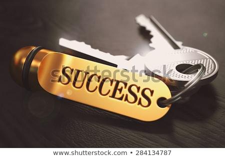 keys to solution concept on golden keychain stock photo © tashatuvango