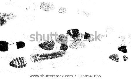 footwear prints on sand Stock photo © ssuaphoto