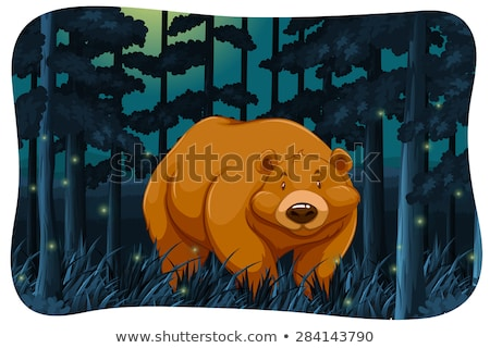 Ours cute jungle nuit sombre blanche Photo stock © bluering