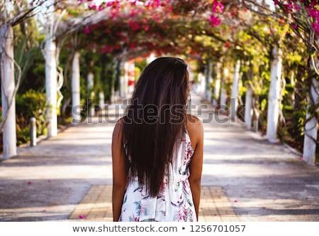 jovem · beleza · flor · água · mãos - foto stock © konradbak