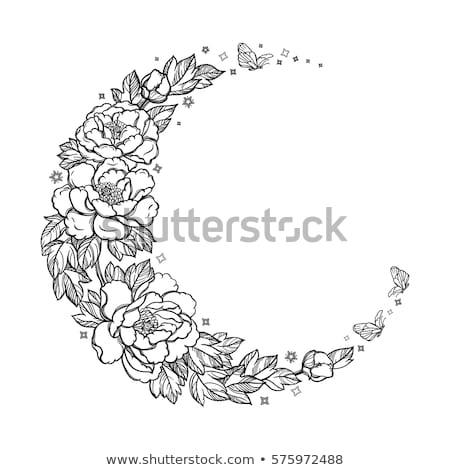 Crescente contorno rosas lua pintado Foto stock © blackmoon979
