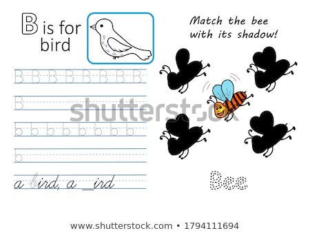 Flashcard letter B is for brain Stock photo © bluering