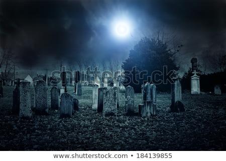 Cmentarz noc zwiewny świetle niebo Zdjęcia stock © albund