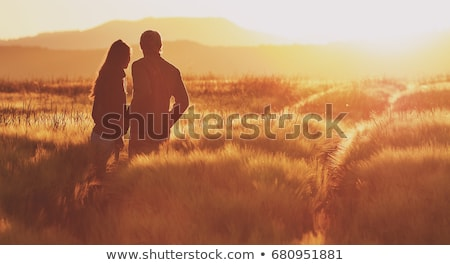 Stock photo: Silhouette of  wedding couple in field