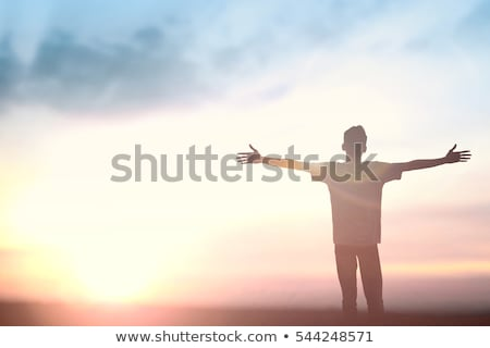 Financial success and self realization concept  Stock photo © ichiosea