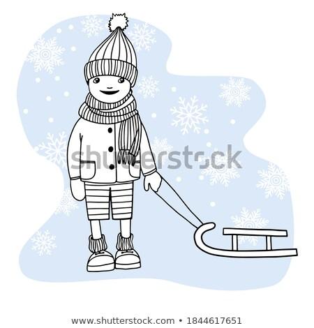 Scandinavian boy on a sled Stock photo © IS2
