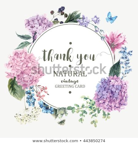 Tebrik kartları dekorasyon çiçek deseni ayarlamak Stok fotoğraf © odina222