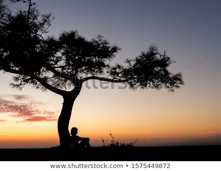 Woman sitting in a tree Stock photo © IS2