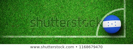 Football in honduras colours  against close up view of astro turf Stock photo © wavebreak_media