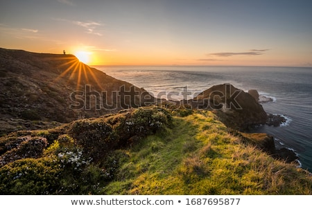 rays of the morning sun over the coastal cliffs evening in a cozy city park landscape silhouettes stock photo © linetale