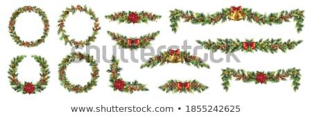 Visco enfeitar pinho decoração inverno Foto stock © marilyna