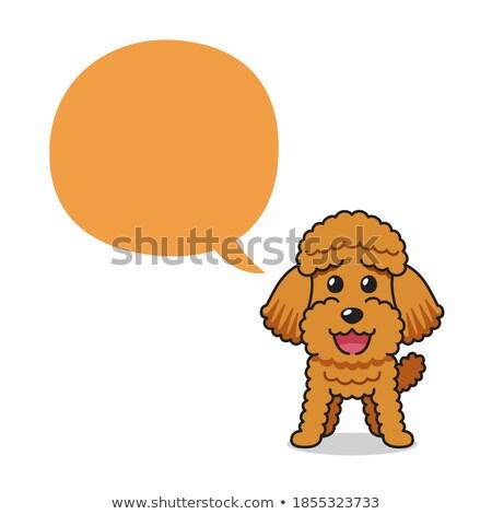 Talking Cartoon Poodle Stock photo © cthoman