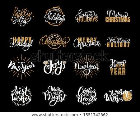 New Year, Happy Holidays Warm Wishes Santa Cookies Stock photo © robuart