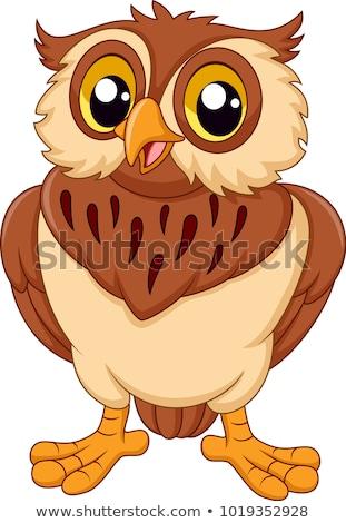 Cartoon búho vector ilustración feliz sonriendo Foto stock © mumut