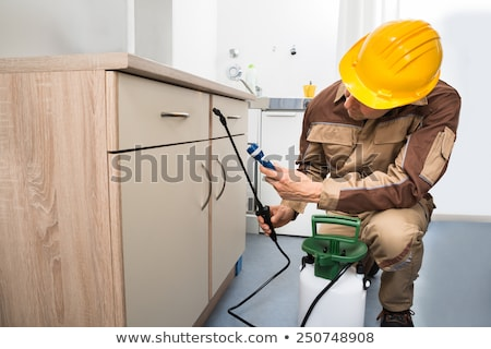 Foto stock: Pest Control Worker Spraying Pesticide On Wooden Cabinet