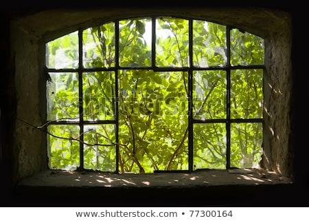 сломанной Windows стены иллюстрация дизайна Сток-фото © colematt