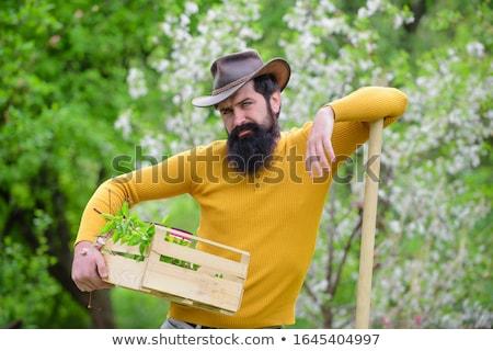 Gazda férfi munka természet háttér művészet Stock fotó © colematt