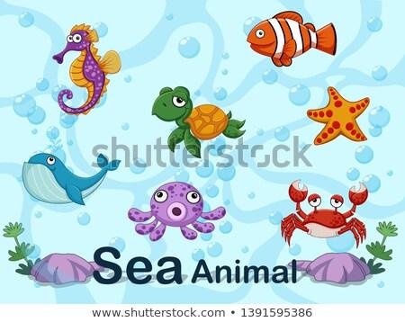 Set sub apă ilustrare mare ocean tropical Imagine de stoc © bluering