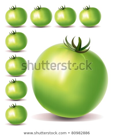 one green tomato matures Stock photo © romvo