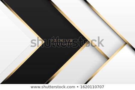 Wektora luksusowe tech biały papieru Zdjęcia stock © Iaroslava