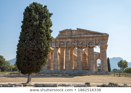templo · Itália · principal · hoje - foto stock © claudiodivizia