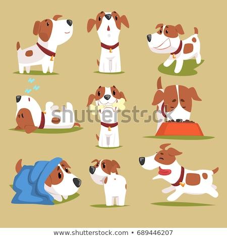 Cute Cartoon perro objetos aislados feliz Foto stock © mumut