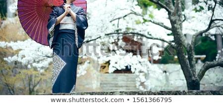 mulher · quimono · azul · lírio · mãos · cara - foto stock © zybr78