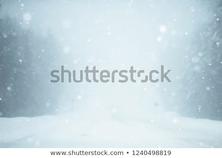vlucht · winter · storm · witte · vliegtuig · luchthaven - stockfoto © ssuaphoto