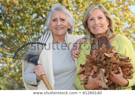 Mother and daughter collecting leaves Stock photo © photography33