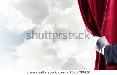 Fluwelen handschoenen witte Blauw donkere leder Stockfoto © FOKA