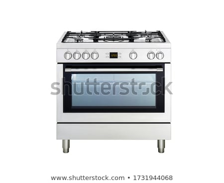 Silver free standing cooker. Stock photo © ozaiachin