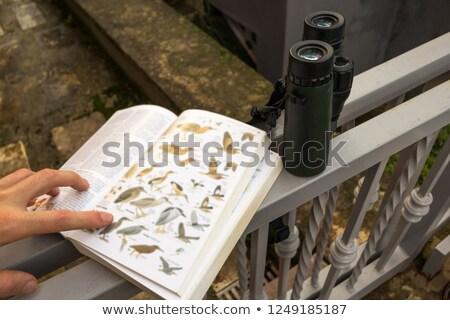 Наблюдение за птицами кавказский молодым человеком глядя птиц весны Сток-фото © igabriela