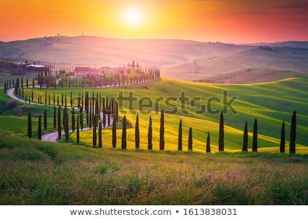 Paisaje puesta de sol Toscana naranja nubes cielo Foto stock © w20er