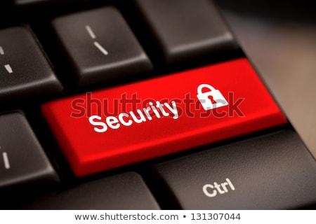 data security on red keyboard button stock photo © tashatuvango