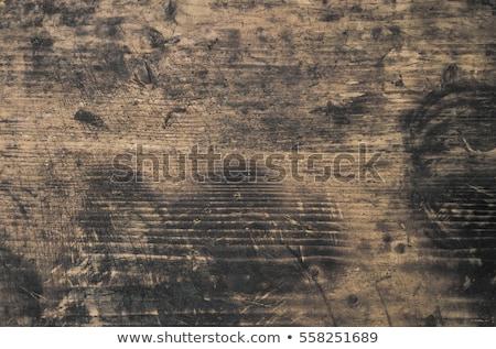 Sáros fa textúra közelkép durva fatörzs természet Stock fotó © mpessaris