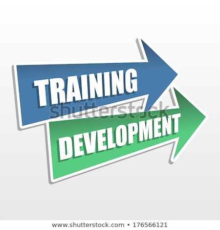 training development in arrows, flat design Stock photo © marinini