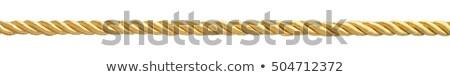 Złoty liny poświata pustyni słońca tekstury Zdjęcia stock © emattil