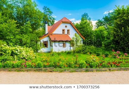 Casa de campo madeira saúde tabela fazenda leite Foto stock © yelenayemchuk