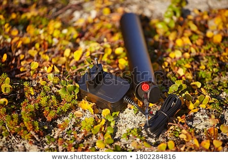 Stylish bicycle on grass Stock photo © vlad_star