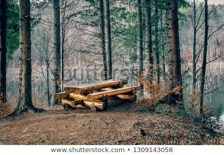 öreg · bogrács · fából · készült · pad · kint · napfény - stock fotó © michaklootwijk