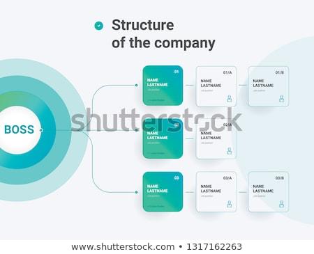 organisation chart Stock photo © get4net