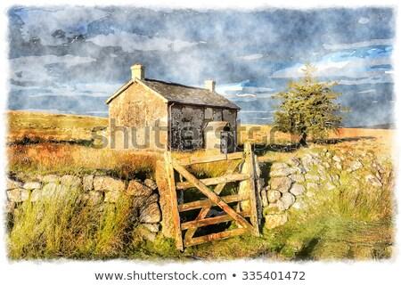 Gate in the old farmhouse Stock photo © Valeriy