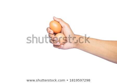 Beyaz kahverengi yumurta gıda arka plan satranç Stok fotoğraf © flariv
