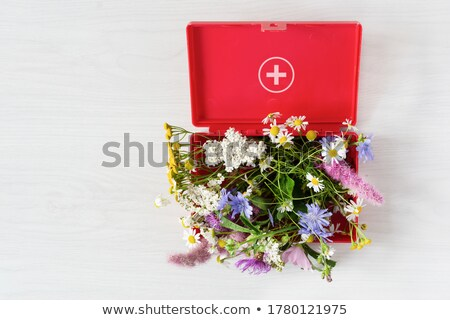 Homeopátia orvosi piros elmosódott szöveg sztetoszkóp Stock fotó © tashatuvango