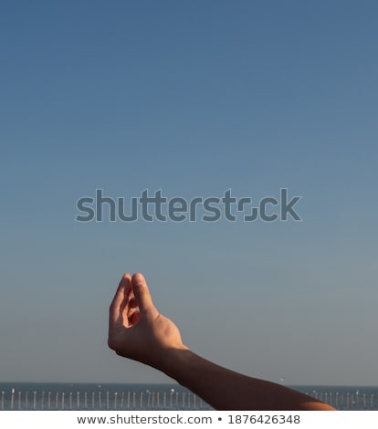 Humans right hand with horizontal blank card Stock photo © cherezoff