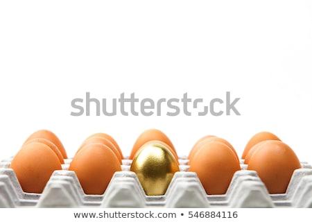 gold egg with white Stock photo © ozaiachin
