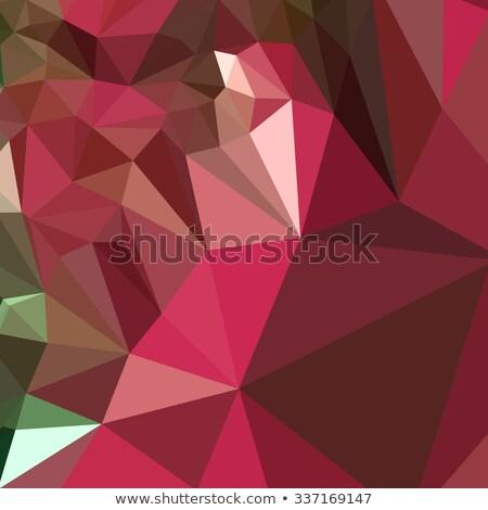 Jam Purple аннотация низкий многоугольник стиль Сток-фото © patrimonio