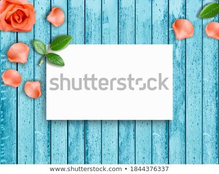 Vermelho tulipas branco assinar textura primavera Foto stock © Zerbor