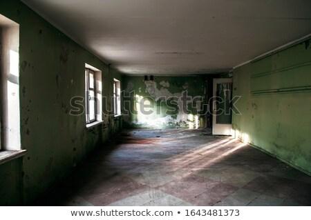 Stok fotoğraf: Salon · oda · kazanmak · pencereler · boş · temizlemek