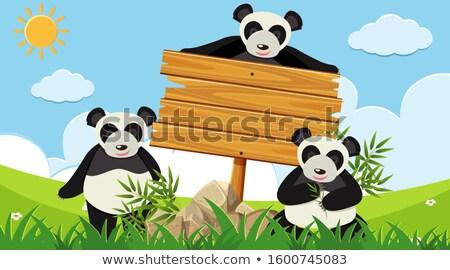 panda · rajz · üres · tábla · baba · arc · boldog - stock fotó © bluering